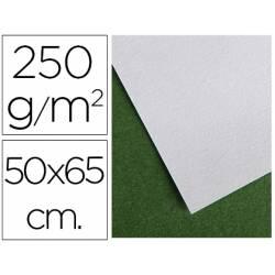 Papel secante marca Canson 65x50 cm 250g/m2