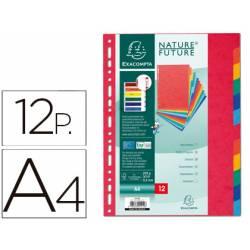 Separadores cartulina Exacompta Din A4 juego de 12 colores