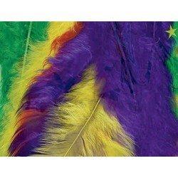Plumas de Pavo Colores surtidos itKrea