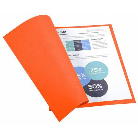 Subcarpeta Cartulina Reciclada DIN A4 Exacompta Naranja 170 gr